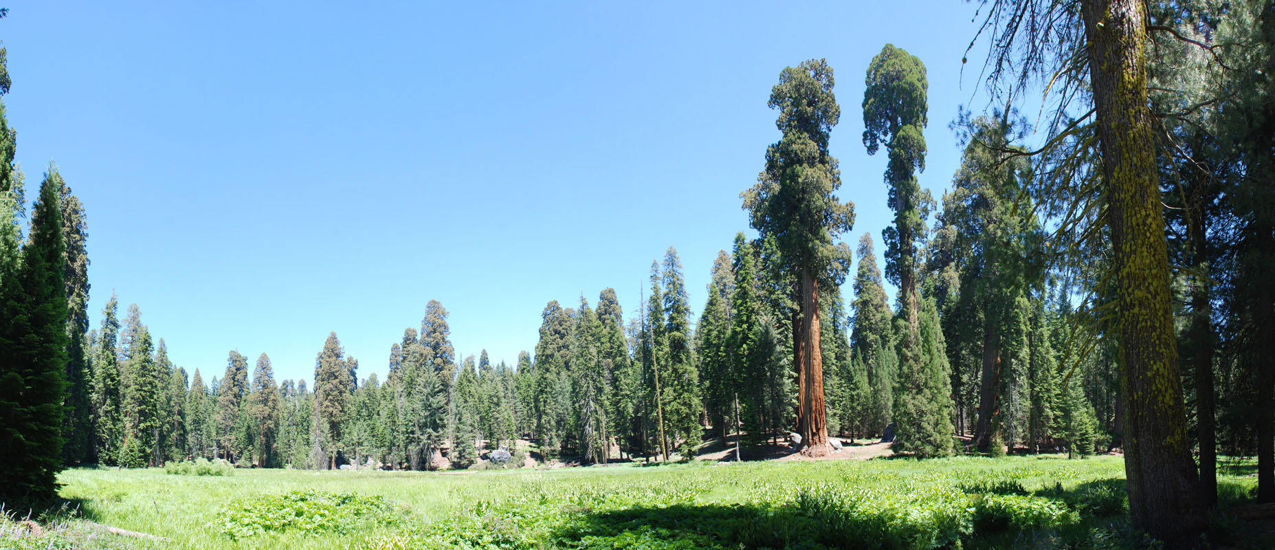 Panoramic Photography Jacob Rosen California